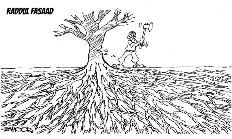 Roots of extremism in Pakistan (cartoon)
